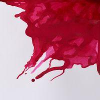 Winsor & Newton Drawing Ink 14ml Crimson