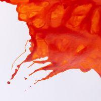 Winsor & Newton Drawing Ink 14ml Orange
