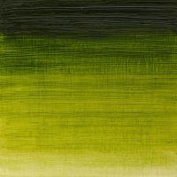 Winsor & Newton Winton Oil Colour 37ml Sap Green