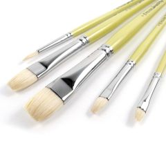 Pro Arte Series B Artists Hog 5 Brush Set W7B