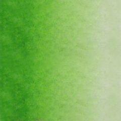 Sennelier Artists Watercolour Half Pan Phthalocyanine Green Light Series 1