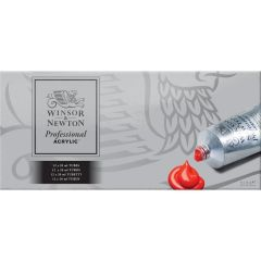 Winsor & Newton Professional Acrylic Paint Set 12x20ml
