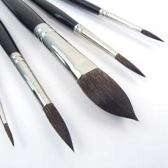 Pro Arte Series 7 & 50 Kazan Squirrel 5 Artists Brush Set