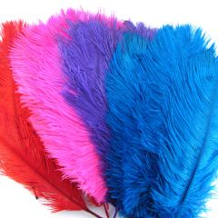 "Ostrich Feathers Pack of 10 (Approx 8""-11"" Long) Pack of 10"